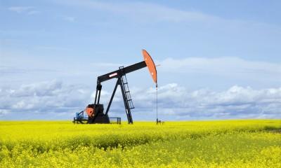 Energy Resilience Assessment